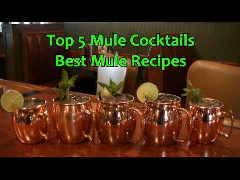 Top 5 Mule Cocktails Drinks Best Moscow Mule Recipes