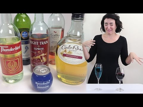 A Real Wine Connoisseur Tastes Shitty Wines! - Tipsy Bartender