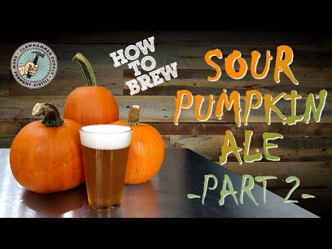 Brewing Beer: Sour Pumpkin Ale Homebrew - Part II