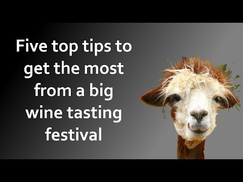 Five essential tips for attending a big wine tasting