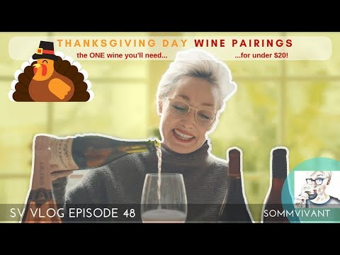 THE ESSENTIAL GUIDE TO THANKSGIVING WINE PAIRINGS - HOW TO KEEP IT SIMPLE, EFFICIENT, & ECONOMICAL